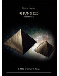 shungite_cover800